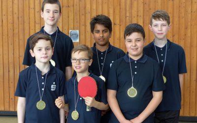 Meister der Jugend 13 Kreisliga (B-Schüler)